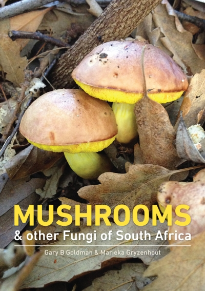 Mushrooms and other Fungi of South Africa